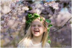 Vrolijk de lente in (HP024959)