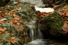 Kleine watervalletjes maken de sfeer.